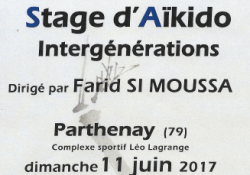 2017-06-11-stage-inter-generation-farid 2